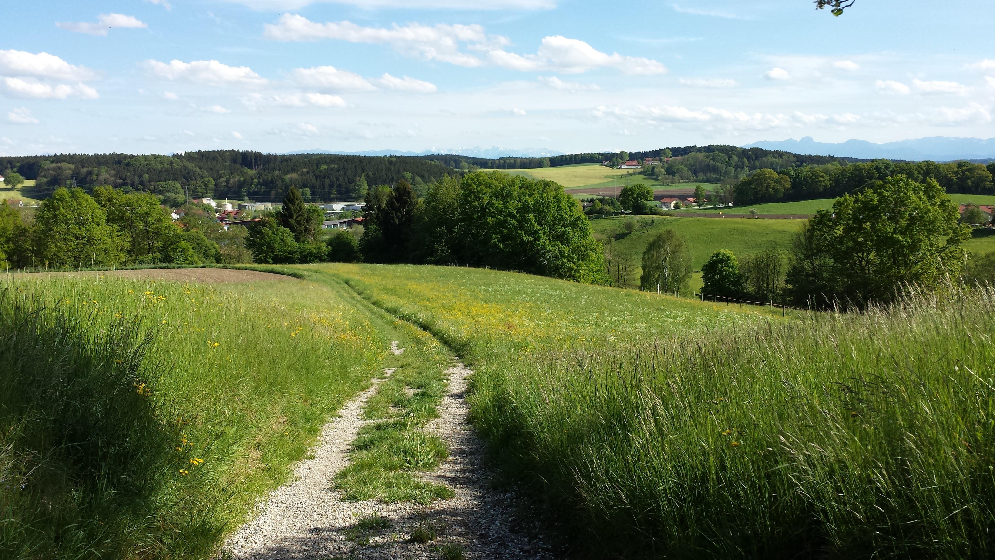 Blick von ebersberg zum Großvenediger